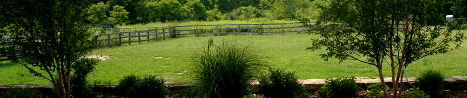 Spirit Horse Farm Spring
