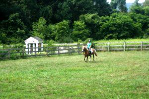 Pony Rides Spirit Horse Farm