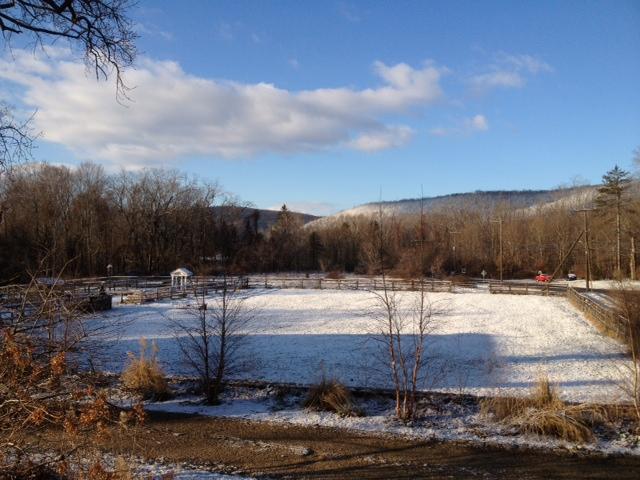 Mild Winter at Spirit Horse Farm?