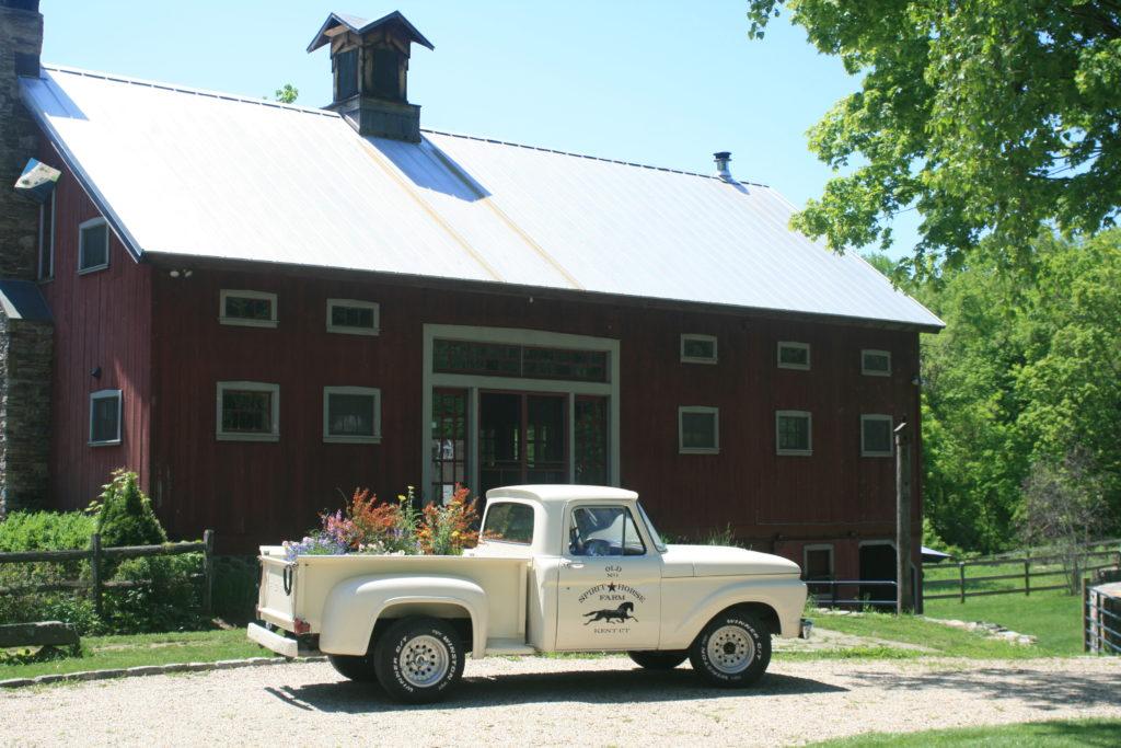 The Spirit Horse Farm White Dove Release Gallery