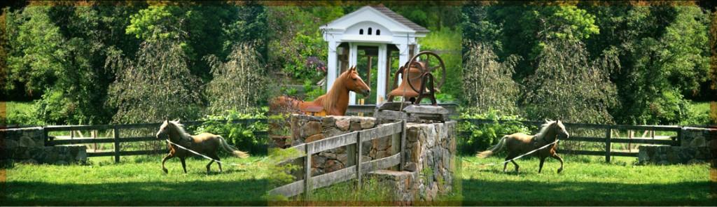 Pony Rides Spirit Horse Farm, Kent, CT