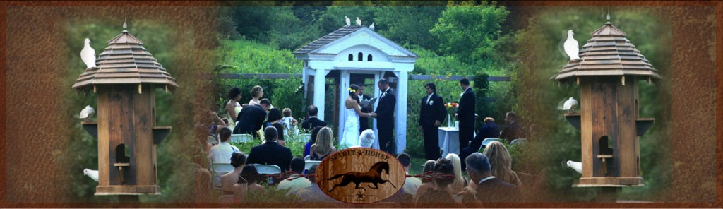 Spirit Horse Farm Weddings!