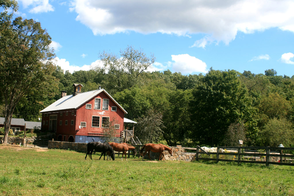 Kent barn owner told to stop renting property out Republican American is False!